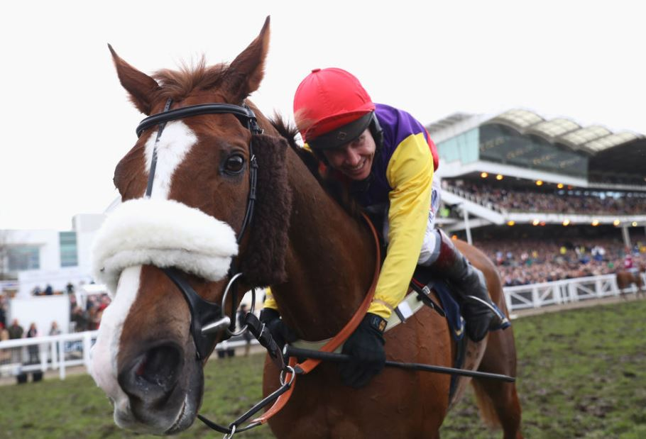 Five most backed Cheltenham horses over the weekend