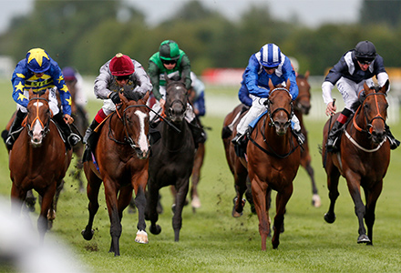Horse Racing Win Calculator