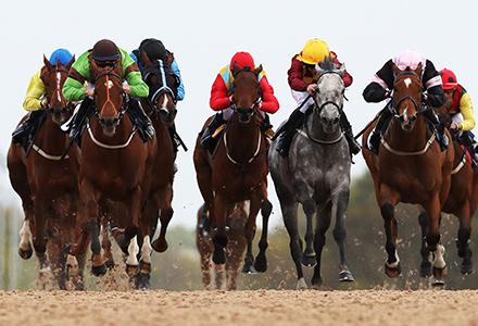 UK Horse Racing Tips: Newcastle