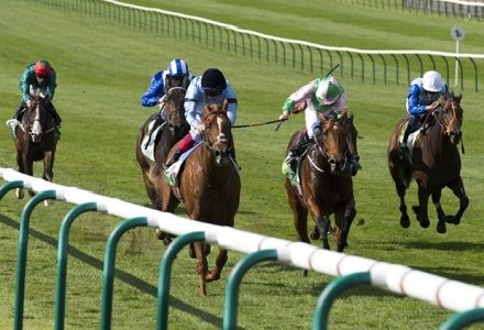 Saturday Racing Tips From Tom Stanley