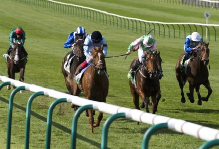 The three most backed horses at Newmarket and Lingfield today