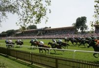 Tom Stanley's Newmarket Tips
