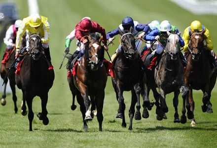 The three most backed horses at Newmarket and York today