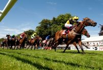 Andy Holding's Magnificent Seven for the Flat in 2017