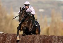 Andy Holding's Cheltenham Review