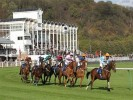 Tuesday's Horse Racing Tips & Preview