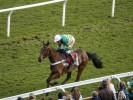 Ok Corral extends lead in National Hunt Chase market