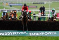 Cavalier fits the bill for Paddy Power glory