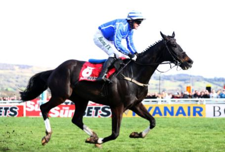 Second favourite Penhill out of Cheltenham Stayers Hurdle
