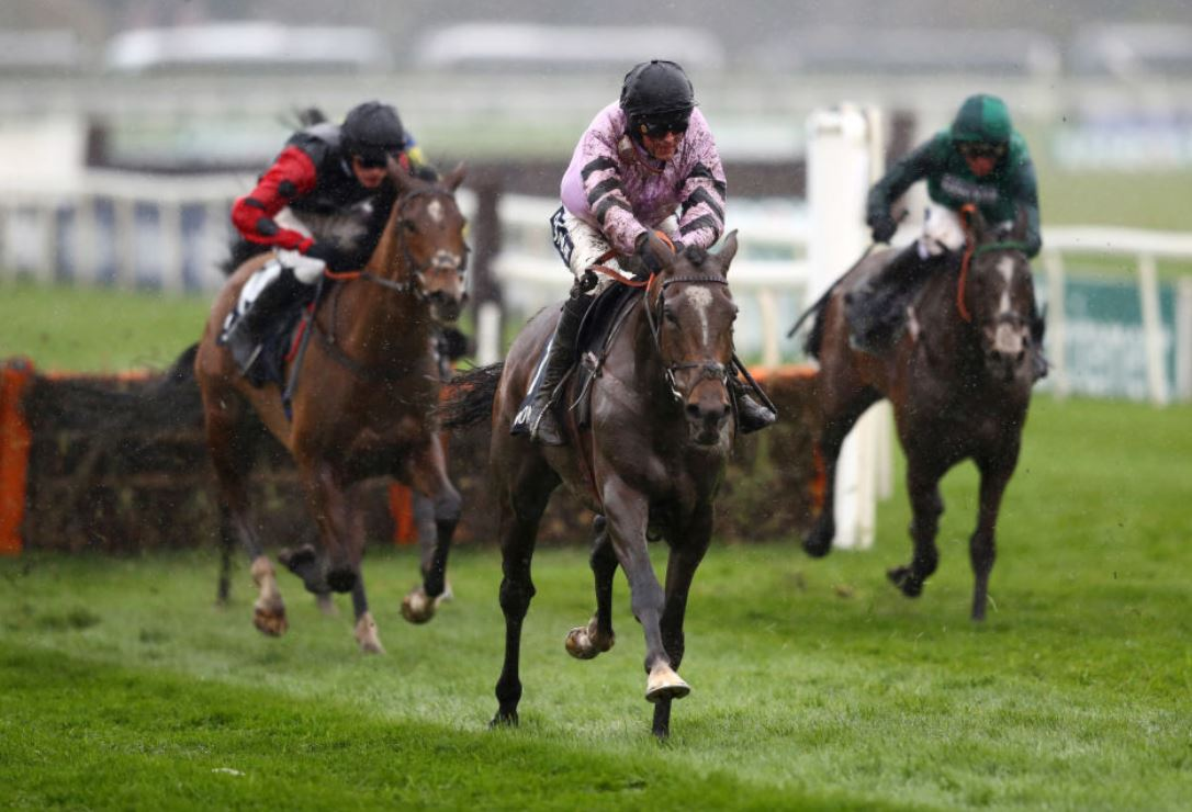 Pentland Hills cut for 2020 Champion Hurdle after battling Aintree victory