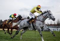 Politologue cut for Champion Chase following Tingle Creek victory