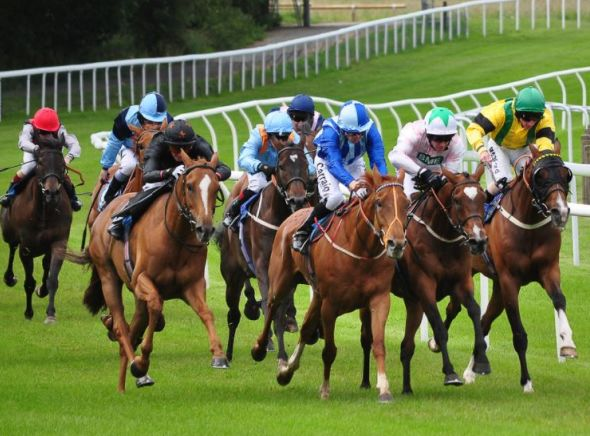 GYTO Tuesday's Horse Racing Tip