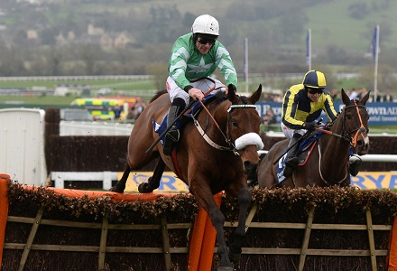 Presenting Percy sparks massive Gold Cup punt