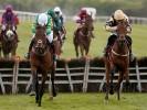 Money Horse: Sunday's Most Backed Horse