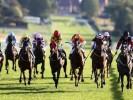 UK Horse Racing Tips: Redcar
