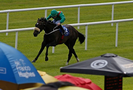 UK Horse Racing Tips: Tramore