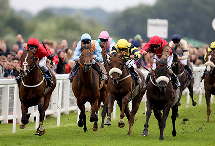 UK Horse Racing Tips: Ripon