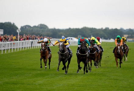 Monday Daily Racing Tips & Preview