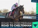 Royale Pagaille slashed to Cheltenham National Hunt Chase favourite
