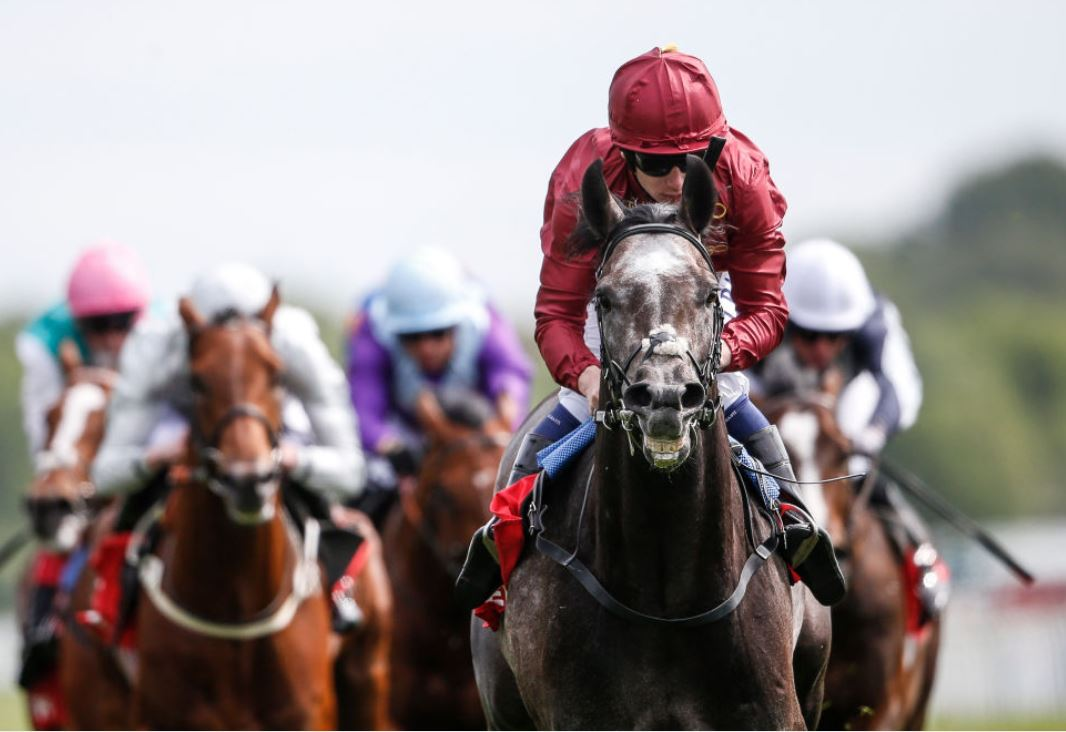 Roaring Lion on the Derby prowl as he wins the Dante Stakes