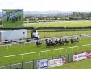 UK Horse Racing Tips: Roscommon