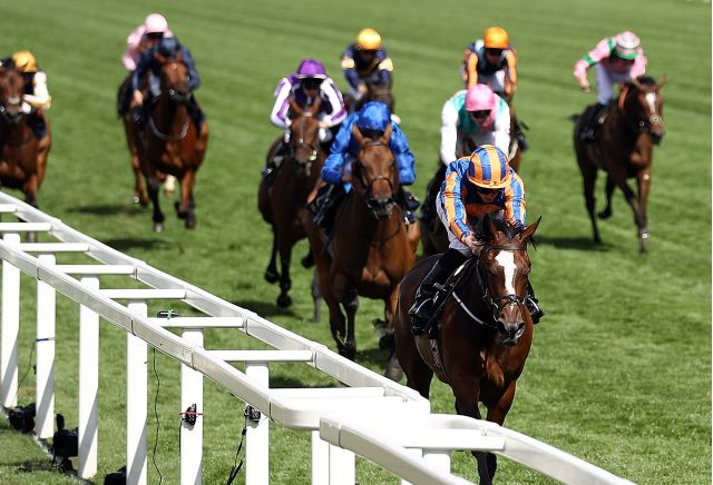 The three most backed horses on day three of Royal Ascot