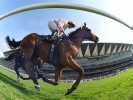 Royal Ascot Day 2 ITV Racing Tips & Preview