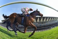 Royal Ascot Day 2 ITV Racing Tips & Preview