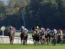 UK Horse Racing Tips: Salisbury