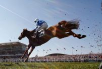 Nick Scholfield: San Benedeto can run into Tingle Creek places