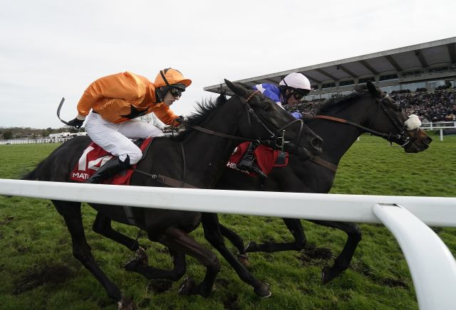 10/1 shot the punters' pick for Cheltenham County Hurdle