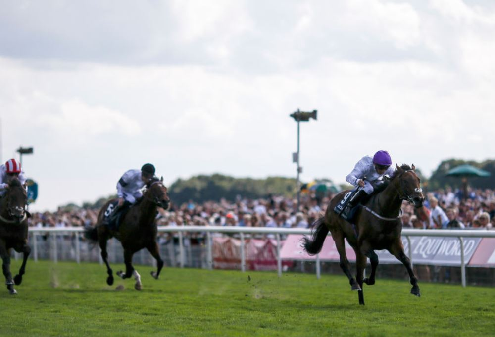 Sands Of Mali well-backed for Commonwealth Cup glory after Haydock success