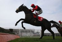 Nick Luck: Saphir Du Rheu can rule supreme in Grand National
