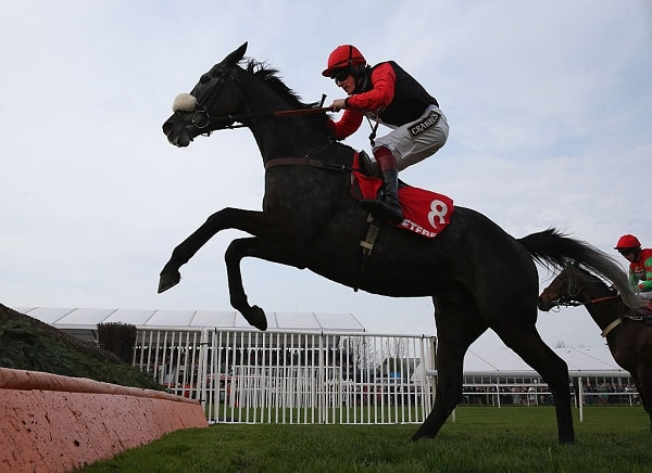 Nick Luck: Saphir Du Rheu can rule supreme in Grand National