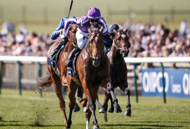 Saxon Warrior on the drift after being handed tough draw in the Epsom Derby