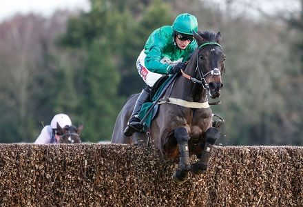 Cheltenham Focus: Arkle betting preview