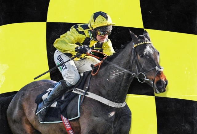 Cheltenham Festival: The horses experts say to avoid this week