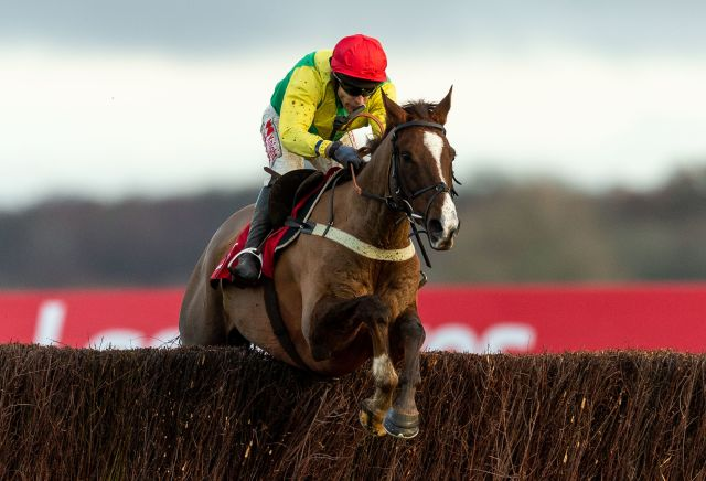 Punters fancy Tizzard-trained horse for the Grand National