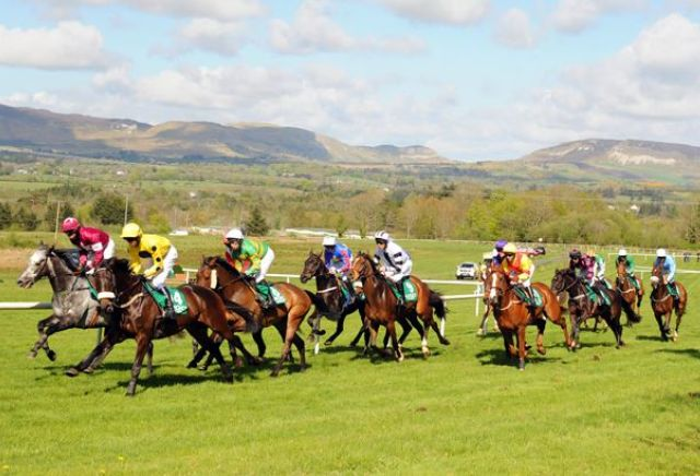 UK Horse Racing Tips: Sligo
