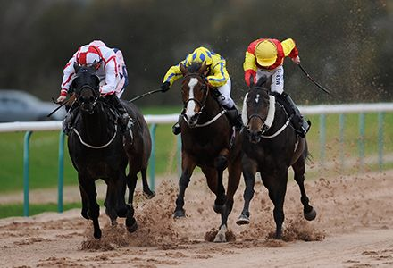 Money Horse: Wednesday's Most Backed Horse