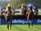UK Horse Racing Tips: Southwell