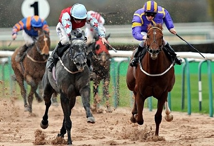 Grey Destiny can continue fine run at Southwell