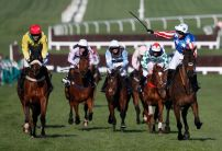 Punters left in shock by dismal Douvan