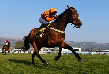 Cheltenham Festival Diary: Thistle shines on chase debut