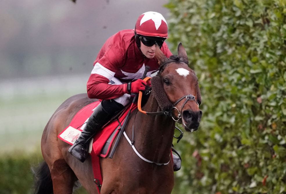 Cheltenham ante-post misery: Only three of top 25 bets have won
