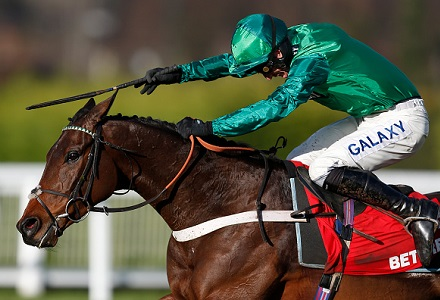 Ante-post bettors in agony as Top Notch is ruled out of Cheltenham