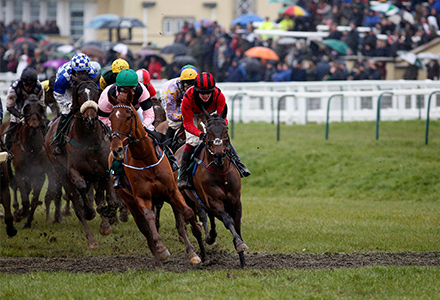 Odds slashed on heavy ground on first day of Cheltenham following severe weather backlash