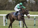Unbeaten Vinndication backed to go chasing at Cheltenham