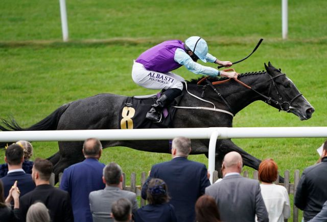 Andy Holding's July Stakes Tips & Preview