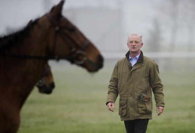 Annamix the Mullins hype horse for Cheltenham